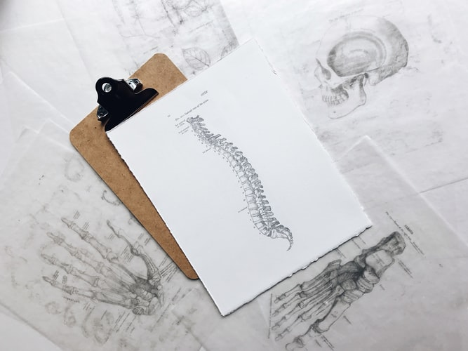 The Truth About Chiropractic X-Rays